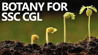 Botany Made Easy for SSC CGL Aspirants- Understanding Classification of Plant Kingdom