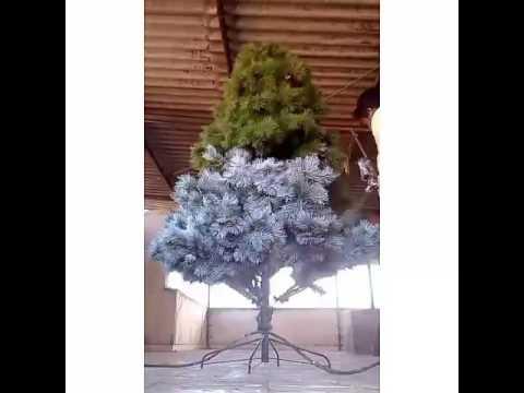 Christmas Tree White Transformation