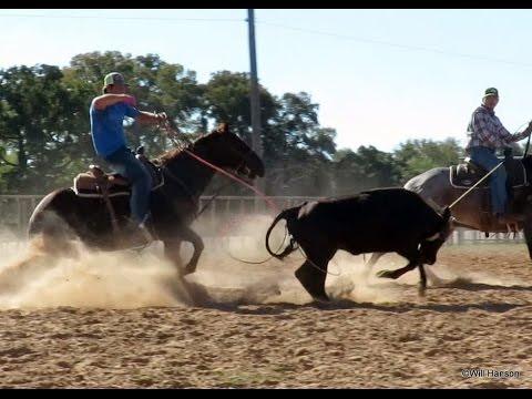 San Lena Pistol - finshed seasoned  solid heel horse -automatic barrels - ropes head side too