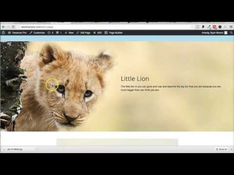How to resize an image in Wordpress! Great Video!