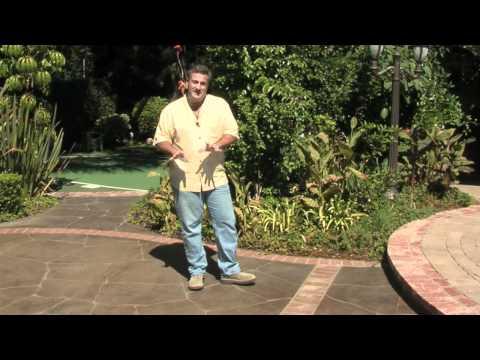 Backyard Paving Remodel