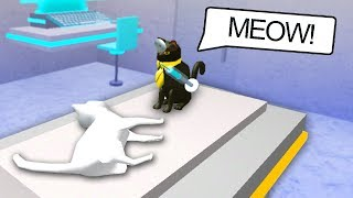 SIR MEOWS A LOT BECOMES A DOCTOR! (Roblox Movie)