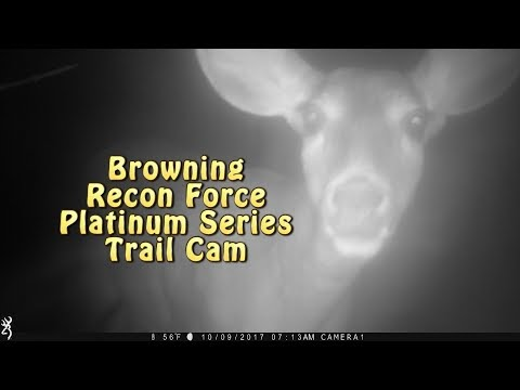 Browning Recon Force Trail Cam