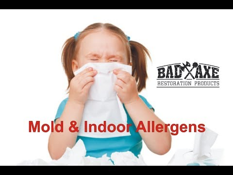Mold and Indoor Allergens by Bad Axe Restoration Products