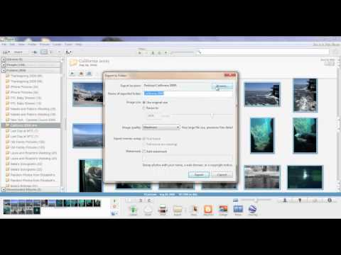 How to Convert RAW Photos to JPEG Files with Picasa