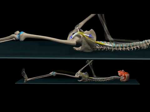 Posture App, Hip Flexor Stretch
