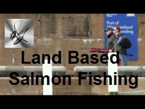 Land Based Salmon Fishing | The Hook and AThe Cook
