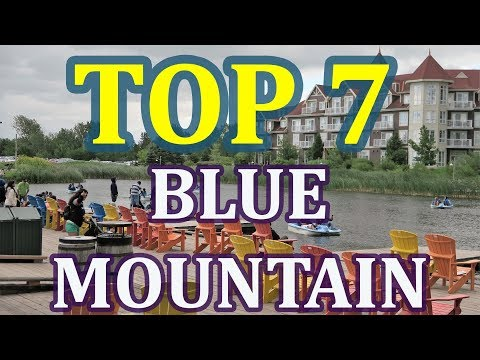 TOP 7 Blue Mountains Atractions and Things To Do in Summer