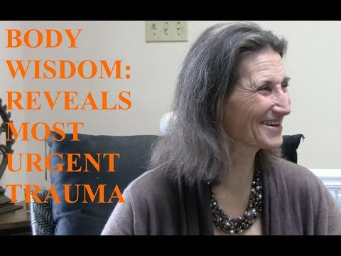 Body Wisdom Reveals the Most Urgent Trauma - Interview with Lynn Himmelman - NDT Master Trainer