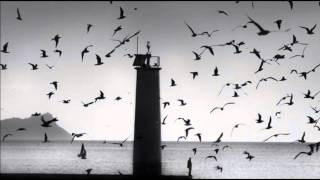 Download The Cinematic Orchestra - Arrival of The Birds & Transformation