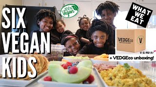 What Our 6 VEGAN Kids Eat In A Day | Breakfast + Vedgeco Unboxing