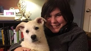 Teen With Autism Weeps Tears of Joy Meeting Her Long-Awaited Service Dog