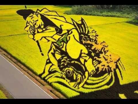 Awesome Rice Paddy Art at Inakadate, Japan