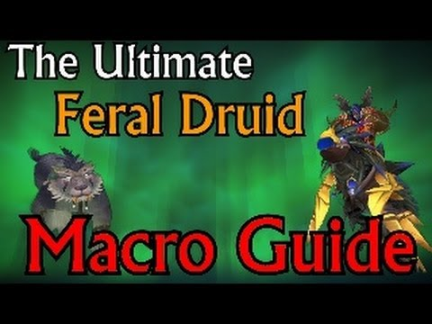 The Ultimate Feral Druid Macro Guide - Mists of Pandaria Patch 5.4.7