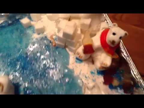 School project of polar bears