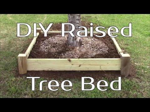 DIY Raised Tree Bed or Planter