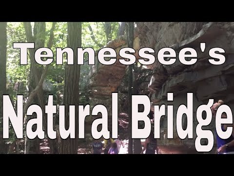 Tennessee's Natural Bridge