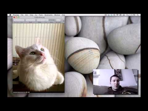 Crop a Photo on the Mac with no extra software
