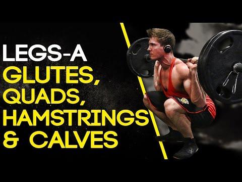 LEGS-A: GLUTES, QUADS, HAMSTRINGS & CALVES