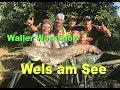 Welsangeln an kleinen Seen und Teichen  / Tauwurm-Pellets-Blutegel / Waller Workshop by Stefan Seuß