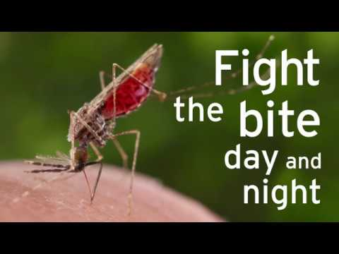 Fight the bite, day and night