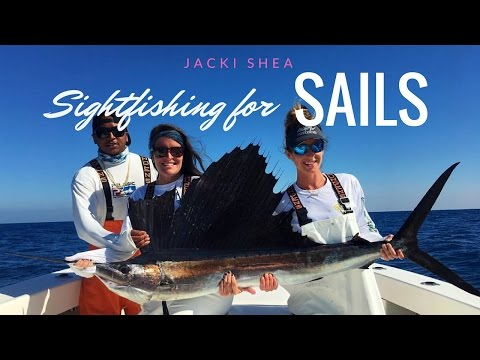 Sightfishing for Sails | Marathon, FL Keys