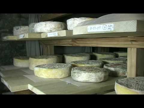 Artisanal, Farmstead Kefir Cheese