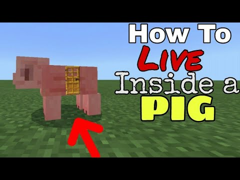 How To Live Inside A Pig In Minecraf - Tutorial (Pocket edition, Xbox, Ps4/3, Wii U, switch)