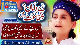 New Naat 2019 - Muhammad Hassan Raza Qadri - Ya Rab Madinay