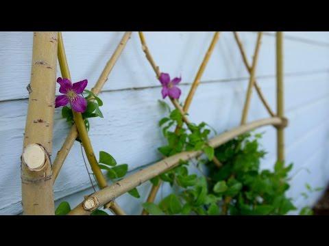 DIY Willow Branch Trellis // Garden Answer