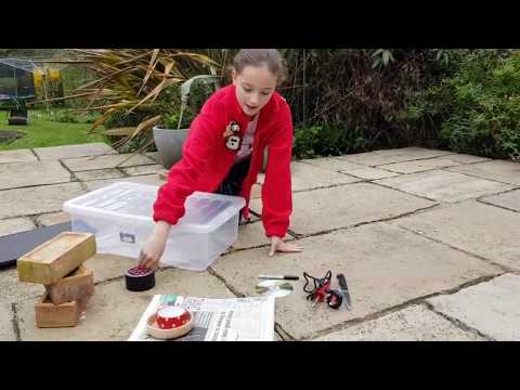 Making a feeding station for hedgehogs in your garden