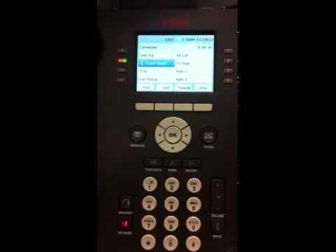 Avaya 9611G Voice Mail Setup