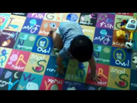 Alaric (6 months) Commando or crawling on all fours?