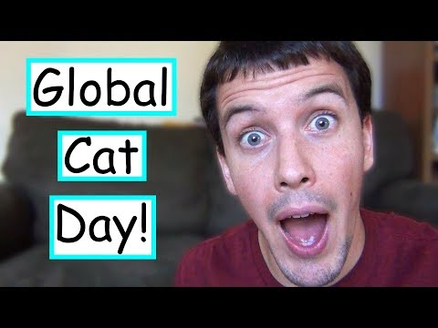 How You Can Help Cats On Global Cat Day!