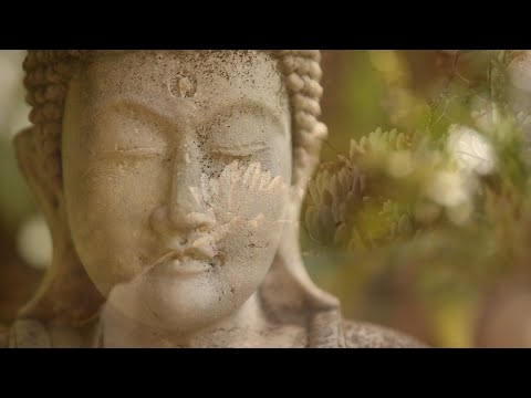 Download You Are Silence Itself ~ Guided Meditation with Sri