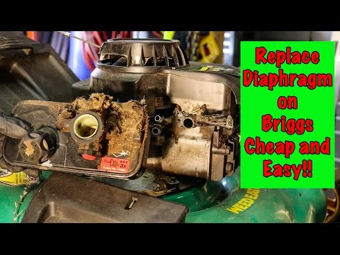 How TO: Briggs and Stratton Carburetor Diaphragm Repair with Primer