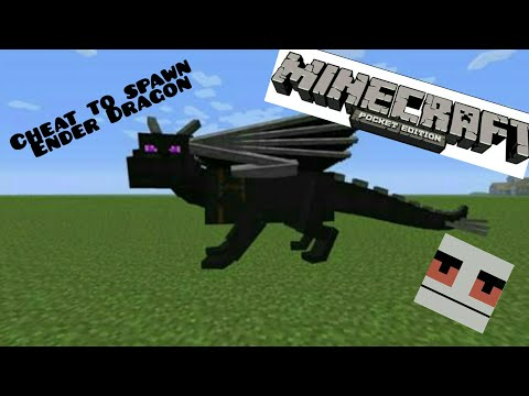 Minecraft: Cheat to spawn an ender dragon.