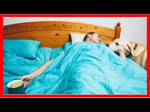 How Do I Avoid Catching Cold or Flu From My Sick Partner?