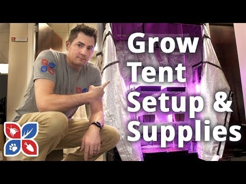 Grow Tent Setup and Supplies - Indoor Gardening Setup | DoMyOwn.com