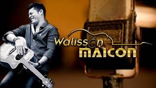 Trincadinho - Walisson Maicon - Ao Vivo (luan Do Arrastão)