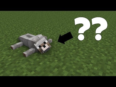 Minecraft: PE :: Tricks You Can Try With Wolves