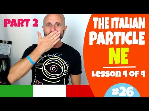 Learn Italian Phrases, Grammar and Culture Q&A - How to Use NE (Less. 4, Part 2) [Ask Manu Italiano]
