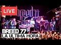 Breed 77 La Ultima Hora Live In Hd Electric Ballroom London