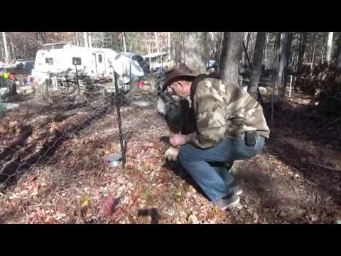 Setting Up Chicken Electric Fence ~ Homestead Life