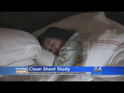 TRENDING: How Often Do You Wash Your Sheets?