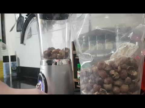 Soap nuts Vs blender how to make Indian washing nuts into a powder for natural cleaning