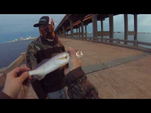 Pensacola WHITE TROUT in COLD Weather