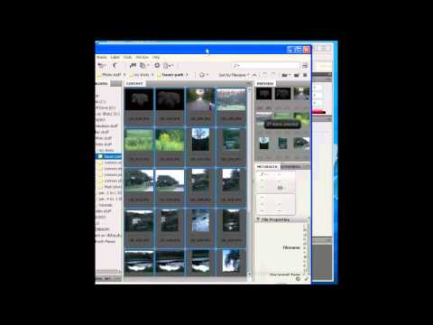 How to make a contact print with Adobe Bridge