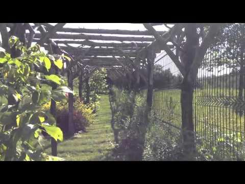 Benches, Gardens, Gazebos, and More...