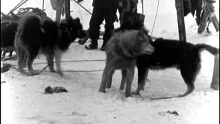Roald Amundsens Sydpolferd